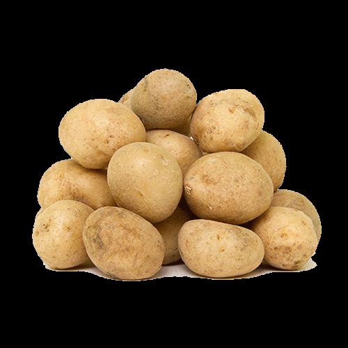 سورتر-سیبزمینی
